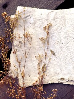Sheets of homemade paper on a table with botanical sprigs