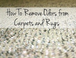 How to remove odors from carpets and rugs