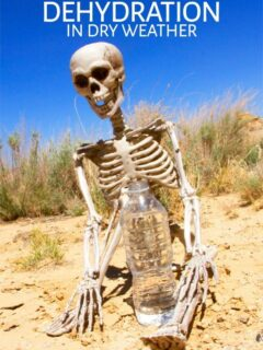 Skeleton sitting in desert with bottle of water