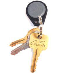 Apartment keys on ring