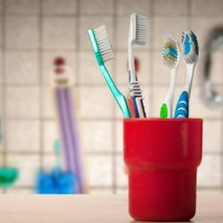 Toothbrushes in holder