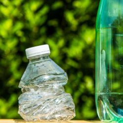Old soda bottles