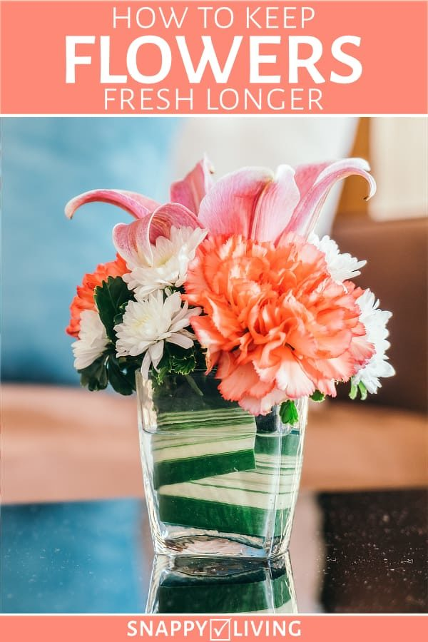 How to Keep Flowers Fresh Longer - Snappy Living