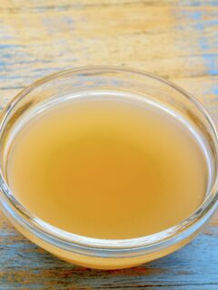Apple cider bowl fly trap