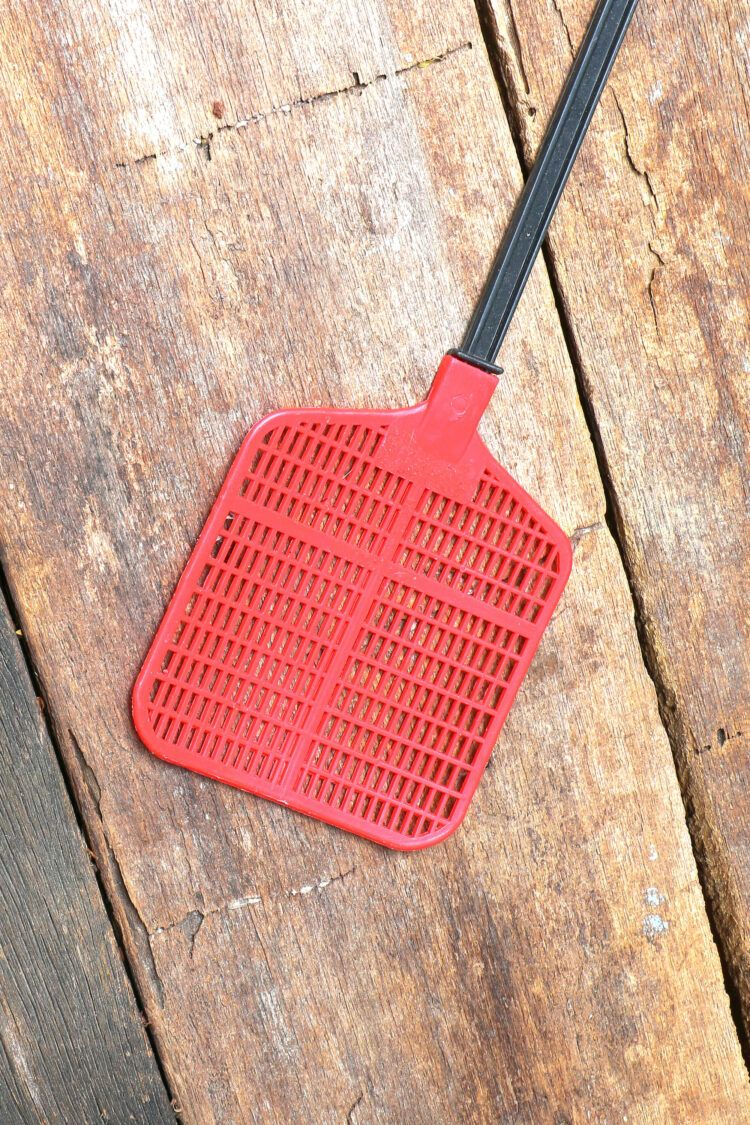 Fly swatter on wooden surface