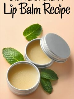 Homemade lip balm in tins with mint leaves