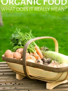 Basket of organic vegetables on table