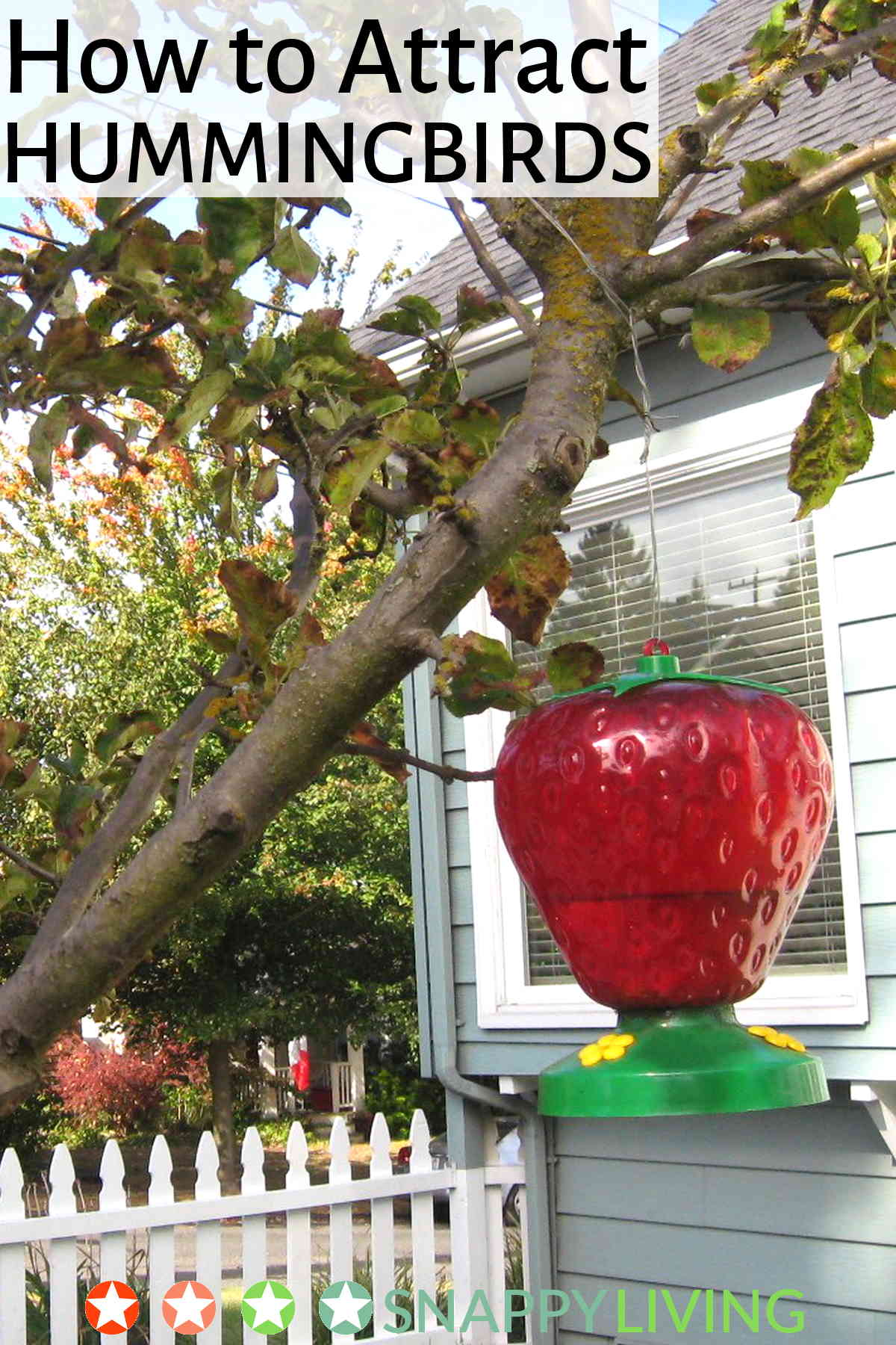 Hummingbird feeder in the shape of a huge strawberry