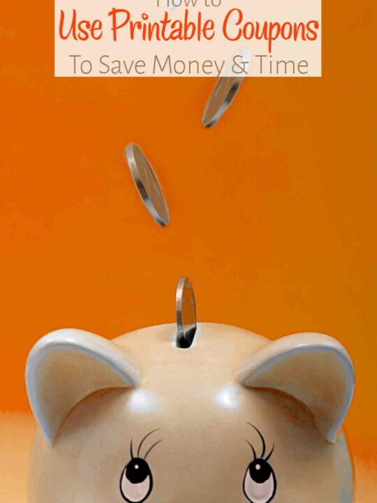 Coins falling into piggy bank