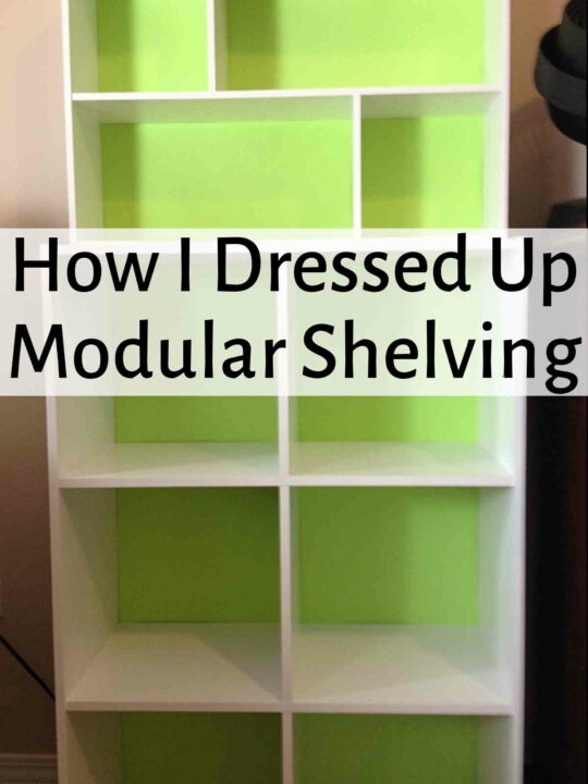 Modular shelving with a bright green backing