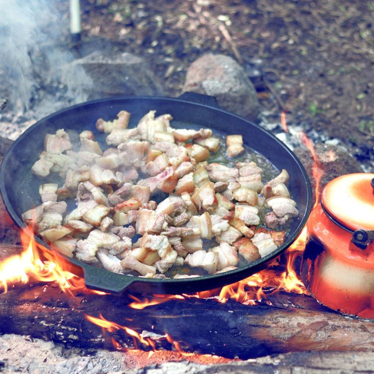 Cast iron skillet over campfire cooking meat