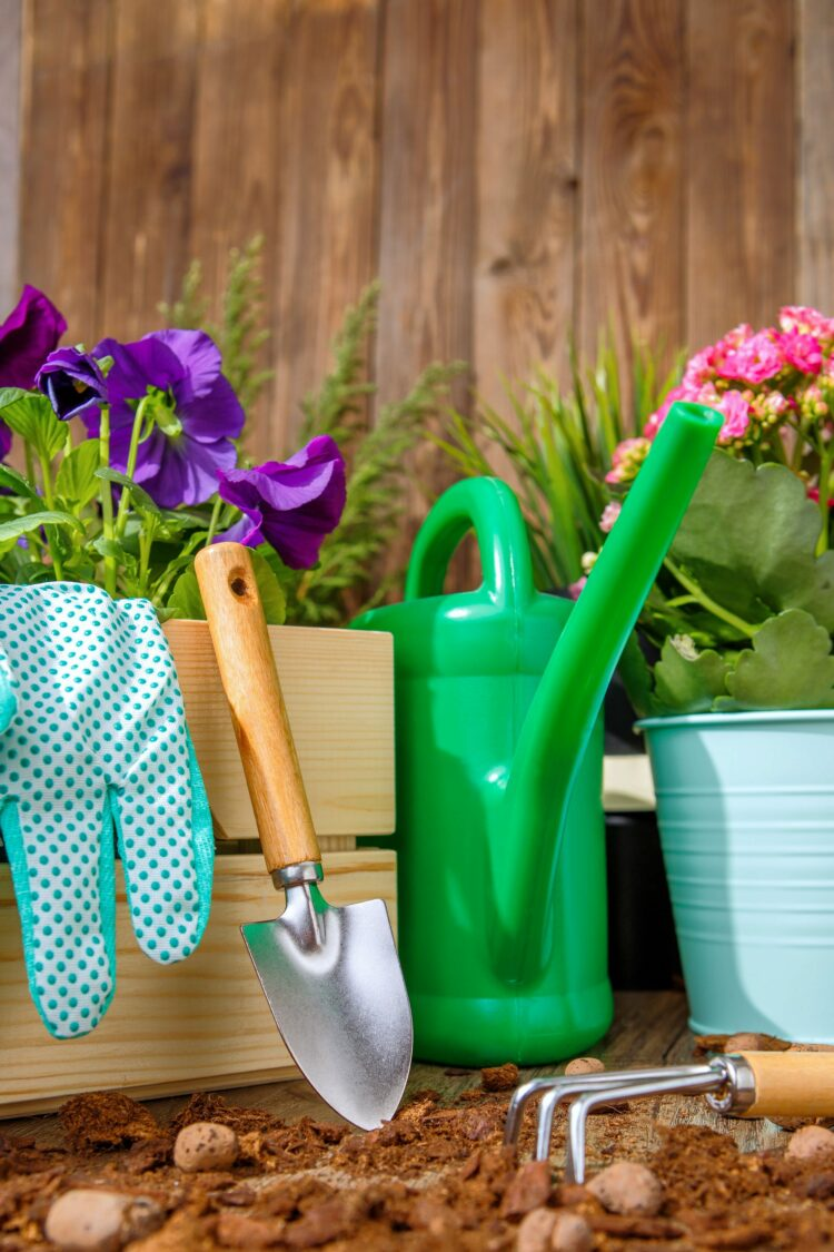Gardening tools and supplies